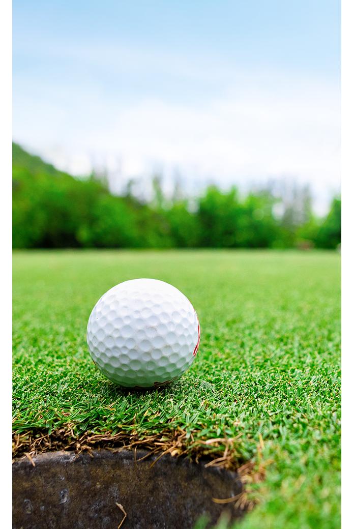 IB SPORTS golf
